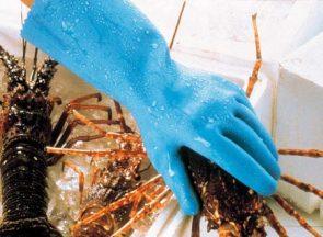 Hycare Glove Blue Size 7 product image