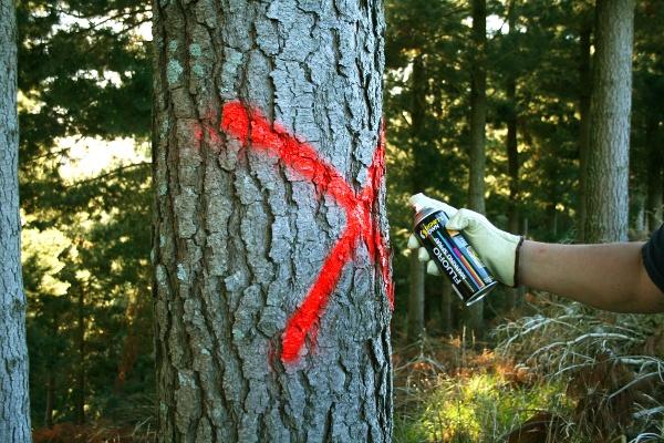 Fluoro Marking Spray red
